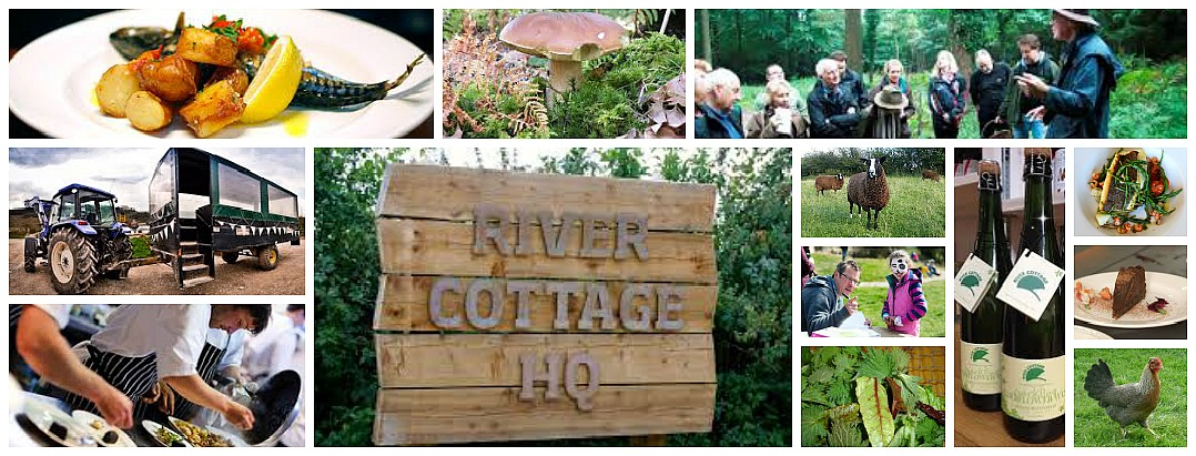 River Cottage events 2014
